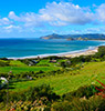 大屏障岛(Great Barrier Island)